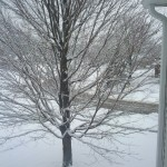 More Snow This Morning